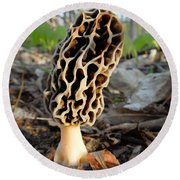 Morel Mushroom Round Beach Towel