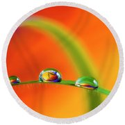 Morning Dewdrops Round Beach Towel