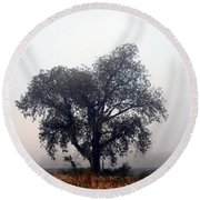 Morning Fog - The Delta Round Beach Towel