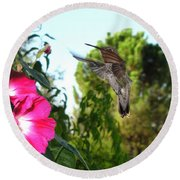 Morning Glories And Humming Bird Round Beach Towel