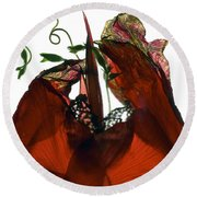 Morning Glory Canna Red Round Beach Towel