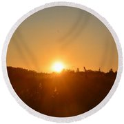 Morning In May Round Beach Towel