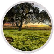 Morning In Wine Country Round Beach Towel