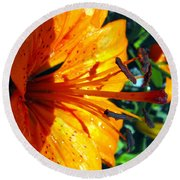 Morning Lily Round Beach Towel