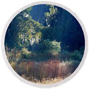 Morning Marsh Sunshine Round Beach Towel