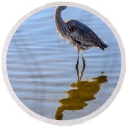 Morning Reflections Of A Great Blue Heron Round Beach Towel