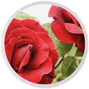 Morning Roses Round Beach Towel