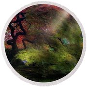 Morning Sun Rays On Old Japanese Maple Tree In Fall Round Beach Towel