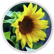 Morning Sunflower Round Beach Towel