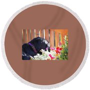 Morning Sunshine Round Beach Towel
