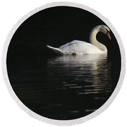 Morning Swan Round Beach Towel