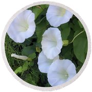 Morning Trumpets Round Beach Towel