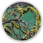 Moss And Trees Round Beach Towel