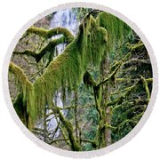 Moss At Munson Creek Round Beach Towel