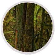 Moss Covered Giant Round Beach Towel