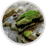 Moss Covered Rock Round Beach Towel