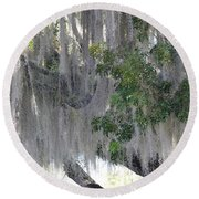 Moss Draped Tree Round Beach Towel
