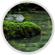 Moss In A Spring Round Beach Towel