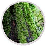 Moss On Tree Round Beach Towel