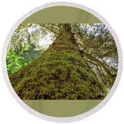Moss Up A Tree  Round Beach Towel