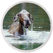 Mossy Moose Round Beach Towel