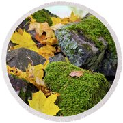 Mossy Stones And Maple Leaves Round Beach Towel
