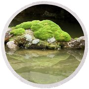Mossy Turtle Rock Round Beach Towel