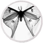Moth Round Beach Towel