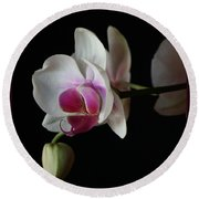 Moth Orchid 1 Round Beach Towel