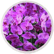 Moth Orchid Exuberance Round Beach Towel