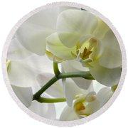 Moth Orchids - White Round Beach Towel