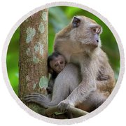 Mother And Baby Monkey Round Beach Towel