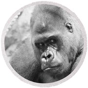 Mother Gorilla In Thought Round Beach Towel