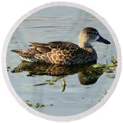 Mottled Duck Round Beach Towel