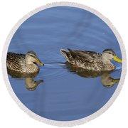 Mottled Ducks, South Padre Island, Texas Round Beach Towel