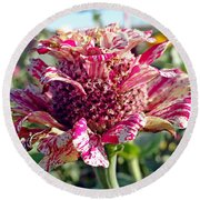 Mottled Pink Cone Flower Round Beach Towel