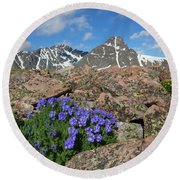 Mount Holy Cross With Wildflowers 2 Round Beach Towel