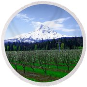 Mount Hood Behind Orchard Blossoms Round Beach Towel