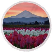Mount Hood Sunrise With Tulips Round Beach Towel