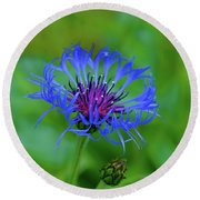 Mountain Cornflower Round Beach Towel by Byron Varvarigos