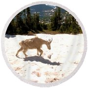 Mountain Goat Crossing A Snow Patch Round Beach Towel
