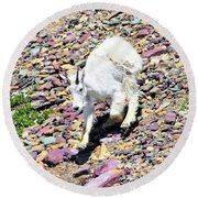 Mountain Goat3 Round Beach Towel
