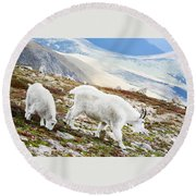 Mountain Goats 1 Round Beach Towel