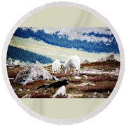 Mountain Goats 2 Round Beach Towel