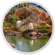 Mountain Goats In Early Fall Round Beach Towel
