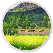 Mountain Horses Round Beach Towel