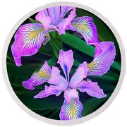 Mountain Iris In Flower California Round Beach Towel