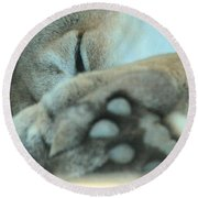 Mountain Lion Round Beach Towel