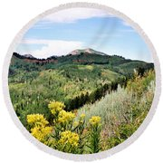 Mountain Meadows Round Beach Towel