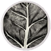 Mounts Botanical Garden 2374 Round Beach Towel